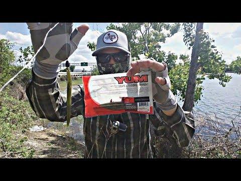 Bass Fishing The YUM Dinger & Rigging