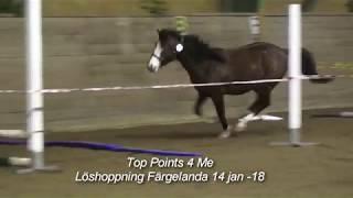 Top Points 4 Me - Löshoppning Färgelanda 14 jan -18