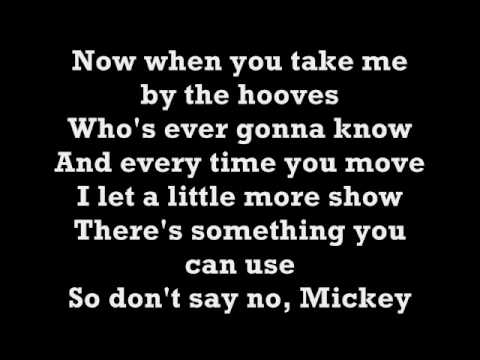Toni Basil-Hey Mickey Lyrics