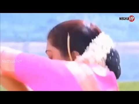 Tamil melody song panju mittai selai katti song