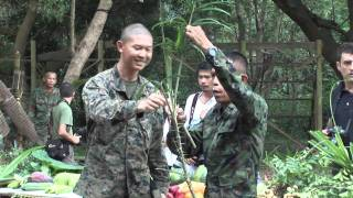 US Marines Snake Eating and Jungle Survival Training in Thailand