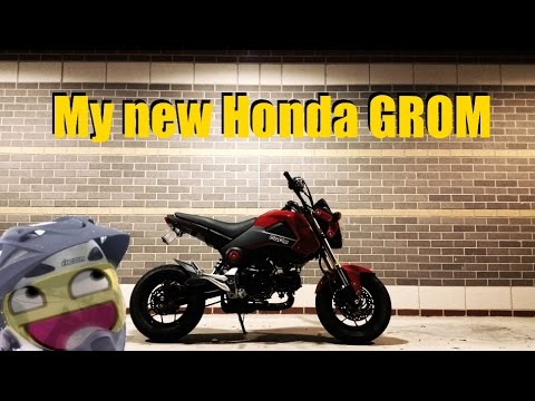 My New Honda Grom!  Youtube