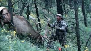 Bow Elk Hunt in the Gila Wilderness of New Mexico