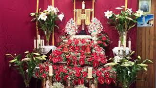 Visita a las Cruces en Puerto de La Cruz