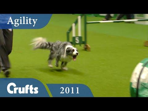 Agility - International Large Finals 2011 | Crufts Dog Show
