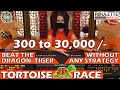 Tortoise Race to Beat The Dragon Tiger