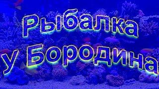 Риболовля у Бородіна 07 04 2019