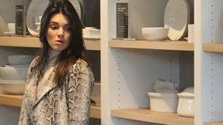 Supercool Kendall Jenner Shops Williams-Sonoma