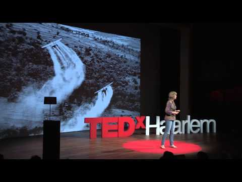 How law can save the Earth. | Femke Wijdekop | TEDxHaarlem