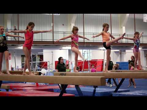Interactive Academy - Recreational Gymnastics