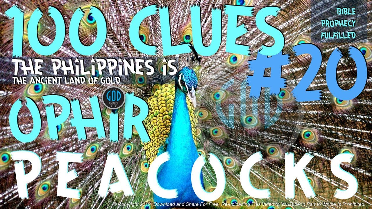 100 Clues #20: Philippines Is The Ancient Land of Ophir: Peacocks? - Ophir,  Sheba, Tarshish