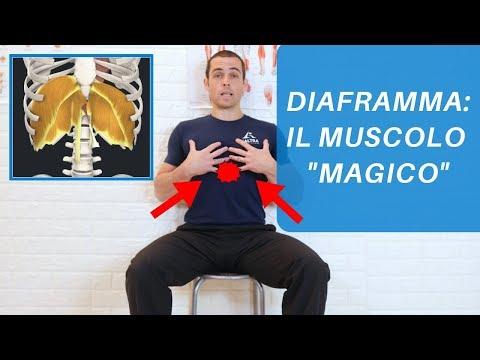 DIAFRAMMA: 5 ESERCIZI per un muscolo che migliora CERVICALGIE, LOMBALGIE, POSTURA e stati d'ANSIA