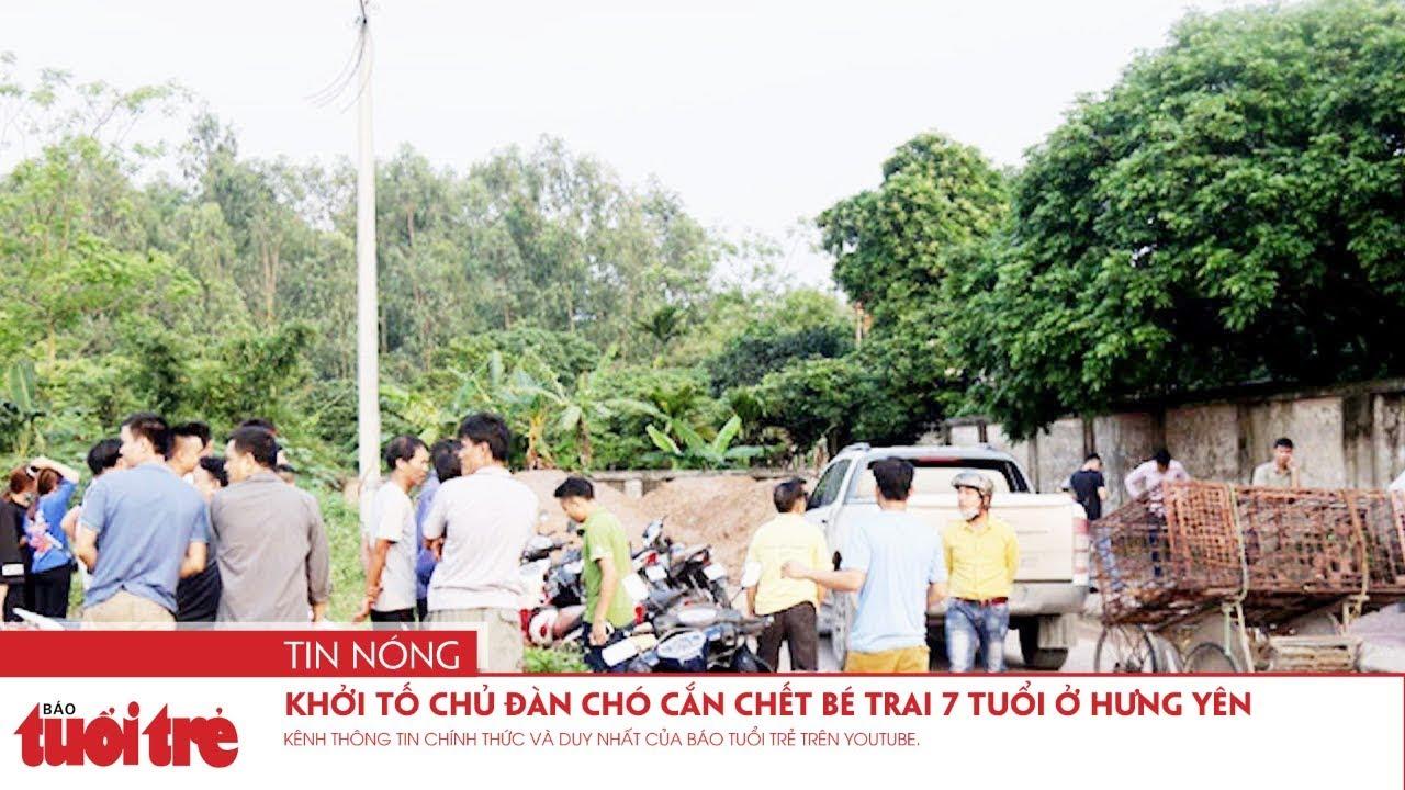 Khởi tố chủ đàn chó cắn chết bé trai 7 tuổi ở Hưng Yên - YouTube