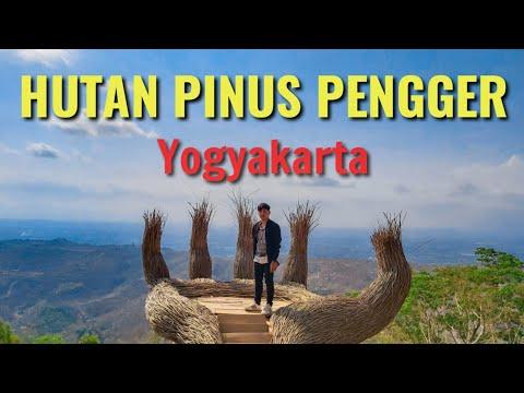 wisata-hutan-pinus-pengger-yogyakarta