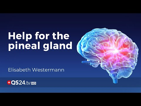 Help for the pineal gland   Meaning of Life   🇨🇭QS24 Swiss Health Television
