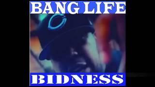 """""""Bang Life Bidness"""" DVD (Red & Blue Makes Green)"""
