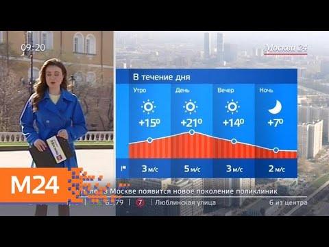 """""""Утро"""": солнечная погода ожидается в столичном регионе 24 апреля - Москва 24"""