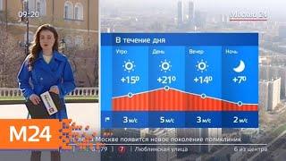 """Смотреть видео """"Утро"""": солнечная погода ожидается в столичном регионе 24 апреля - Москва 24 онлайн"""