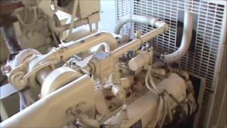 Ford (Kohler) 80kW, 208V Open Natural Gas Generator Set