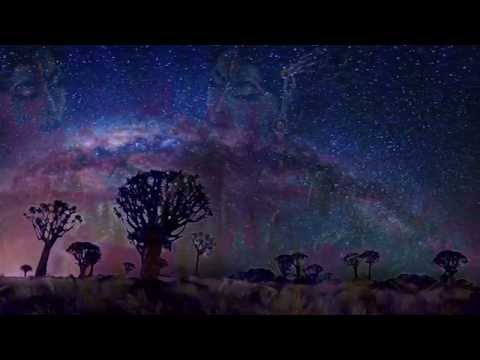 The Cosmic Flute [Flute Psybient Compilation Vol.1]