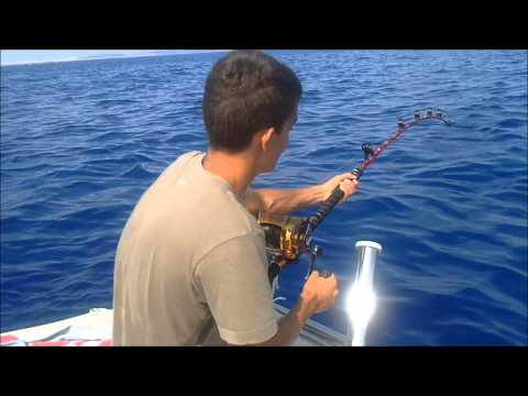 Sports Fishing for Bluefin Tuna in Malta