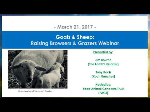 Goats & Sheep: Raising Browsers and Grazers