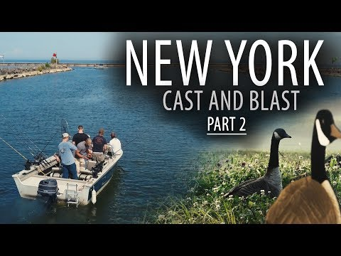 New York: Part 2   Cast N' Blast Lake Ontario Salmon And Canada Geese