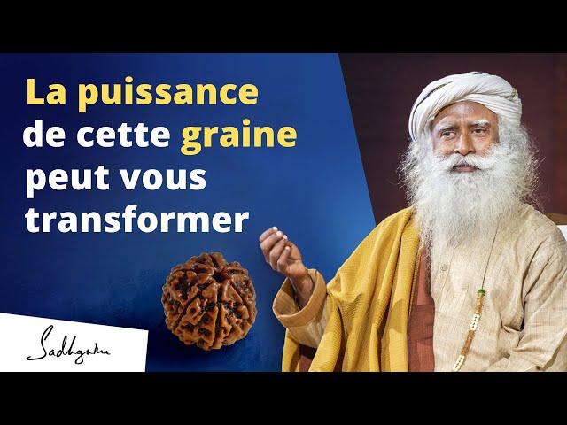 Cette graine vous protègera des énergies négatives | Sadhguru Français