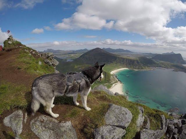 Husky adventure: Lofoten & Vesterålen, Norway // GoPro Hero5 Black