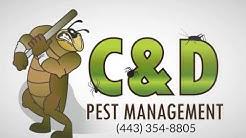 Pest Control Services Hampton MD (443) 354-8805