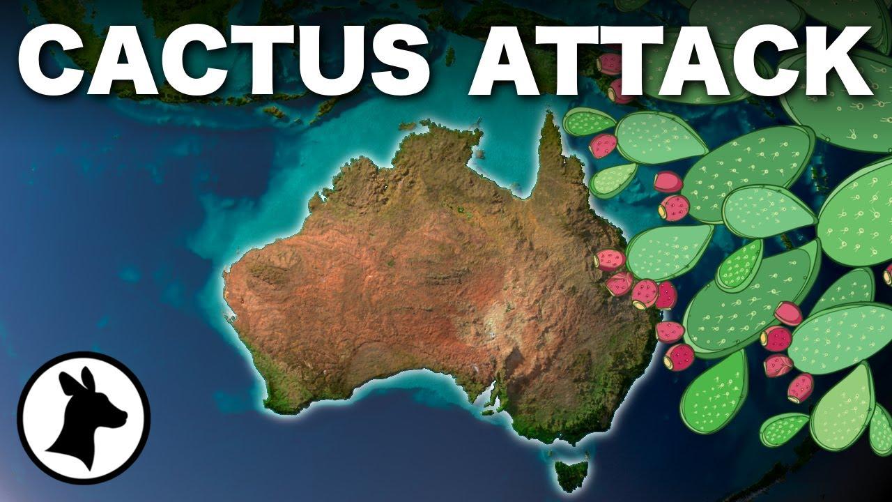 Australia's Cactus Attack