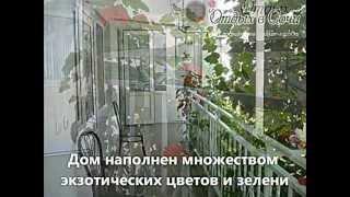 """Гостевой дом """"Белый виноград"""""""