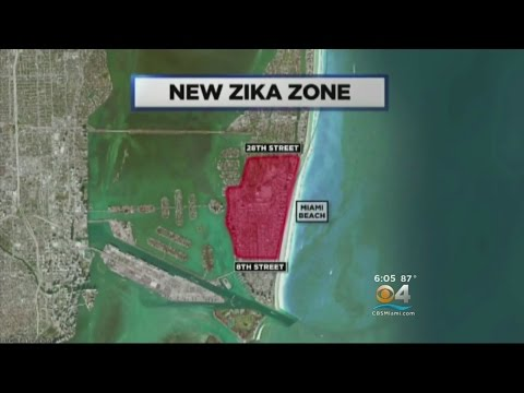 Crews Conduct Zika Spraying In Miami Beach