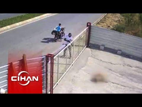 Pompalı tüfekle bekçi köpeğini öldüren adamın cezası belli oldu