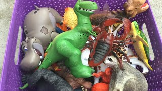 Learn Names of Dinosaurs and Zoo Animals and Wild Animals Toys for Kids