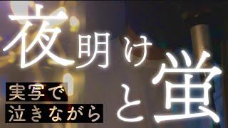 【短編映画】泣きながら「夜明けと蛍」思い歌ってみた【ありを】