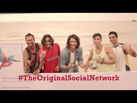Kingfisher - The Original Social Network