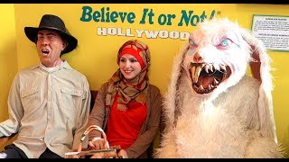 Mean Bunny Scare Prank - Ripley's in Hollywood thumbnail
