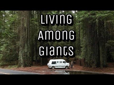 Big Sur & Jalama Van Dwelling