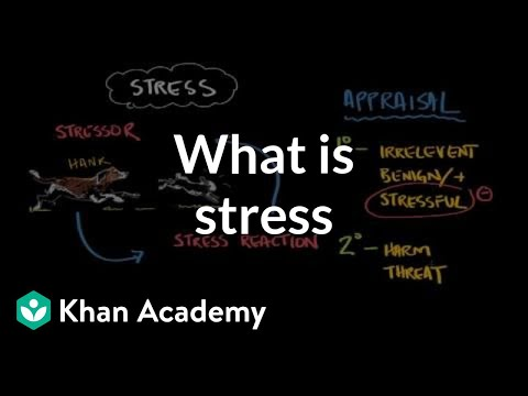 What is stress? | Processing the Environment | MCAT | Khan Academy