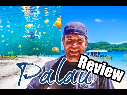 Learned Lessons From Palau And Jellyfish Lake