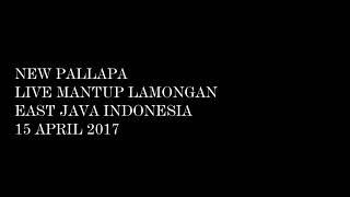 "Cak met MOVE ON ndx a.k.a""new pallapa"" terbaru voc jihan audy 2017"