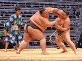Looking for sumo wrestlers in tokyo   5    tts with medi