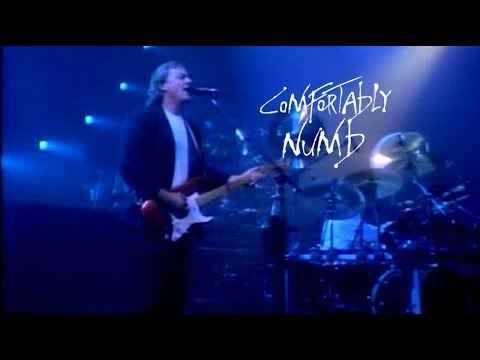 "Pink Floyd -"" Comfortably Numb "" 1988"