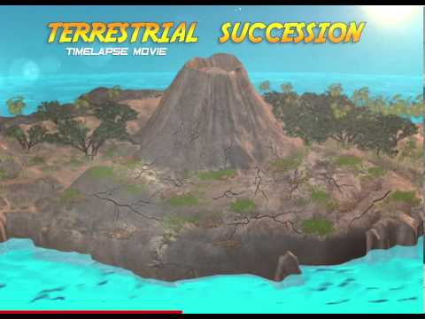 Terrestrial Succession Timelapse Video