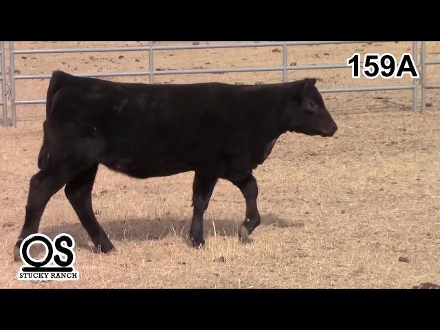 Stucky Ranch Lot 159a