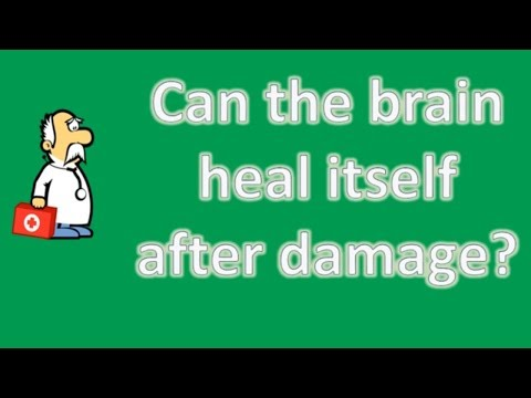 Can the brain heal itself after damage ? | Health Channel