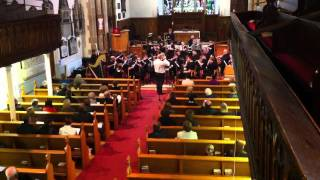 Cavatina (Williams) - Lisburn Flute Orchestra