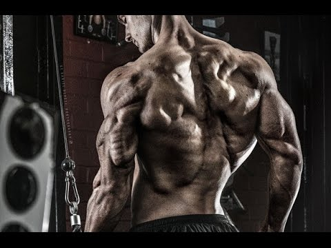 Dream Chaser Aesthetics Bodybuilding Motivation Youtube