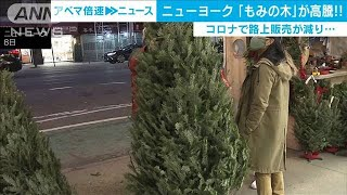 NYでクリスマスツリーが高騰 大規模山火事も原因(2020年12月9日) - YouTube